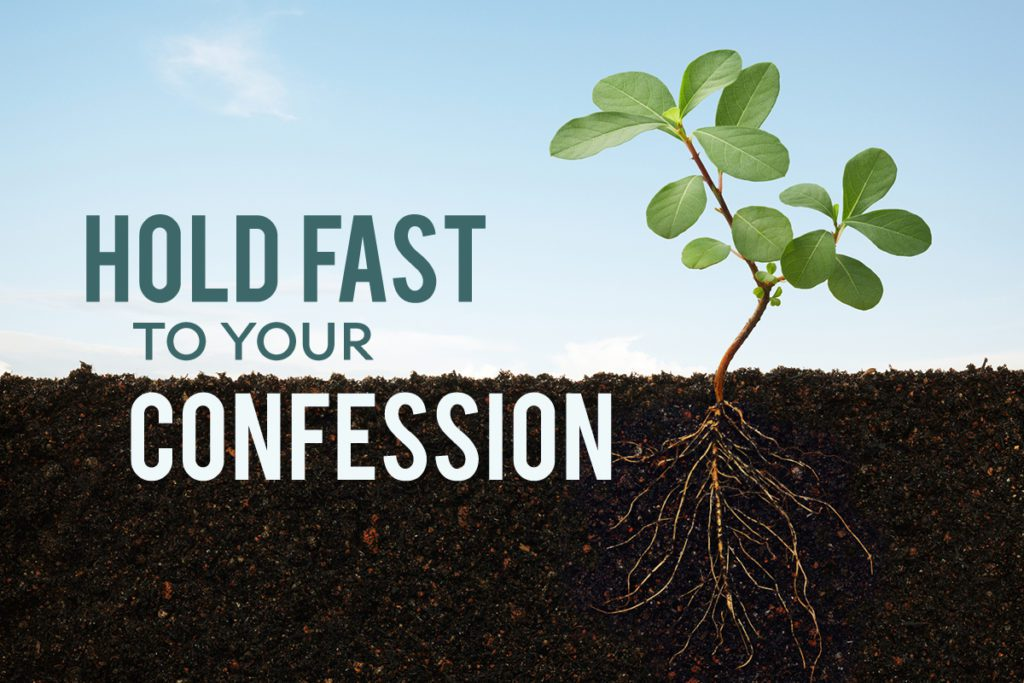 Hold Fast to Your Confession by Terradez